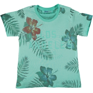 Civil Boys Combed Cotton Boy T-Shirt Mint Green Age 2-5