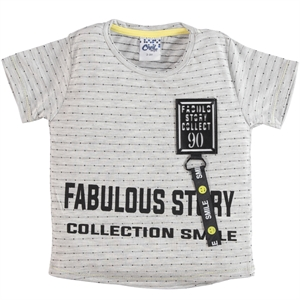 Civil Boys Boy T-Shirt Gray 2-5 Years