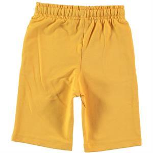 Cvl Boy Age 2-5 Mustard Capri (2)