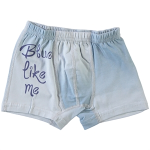 Donella The Ages Of 2-10 Blue Underwear Boy