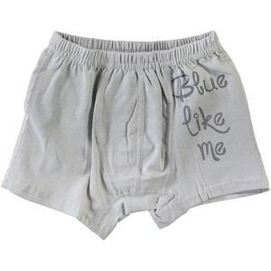 Donella The Ages Of 2-10 Gray Boy Underwear