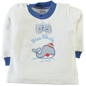 Civil 3-9 Months Baby Boy Sweatshirt IndiGo