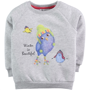 Cvl 2-5 Years Kids Girl Gray Sweatshirt