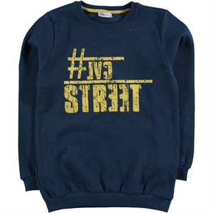 Cvl The Ages Of 10-13 Boy Sweatshirt Indigo