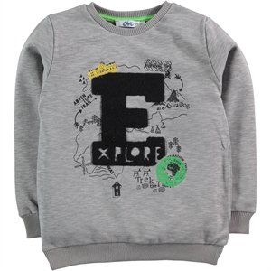 Civil Boys Age 6-9 Boy Gray Sweatshirt