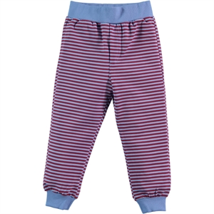 Cvl Boy Sweatpants Blue 2-5 Years