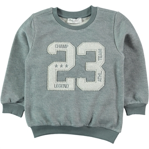 Cvl 2-5 Years Boy Gray Sweatshirt