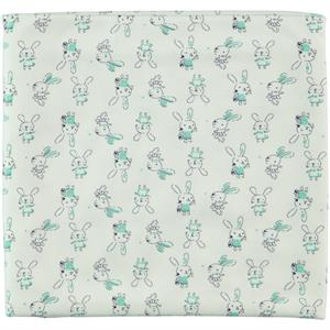 Civil Baby Mint green baby girl Blanket double 85x90 Cm (1)