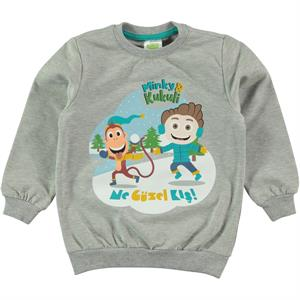 Cvl Minky Boy Gray Sweatshirt 1-5 Years