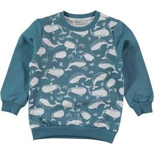 Cvl 2-5 Years Boy Sweatshirt Mint Green