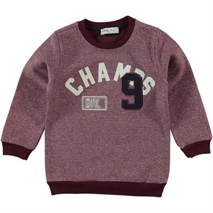Cvl 2-5 Years Boy Kids Sweatshirt Burgundy