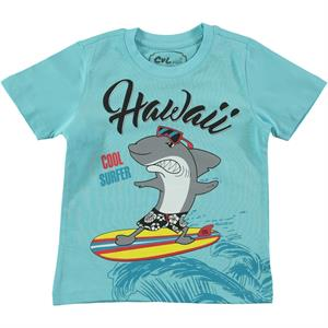 Cvl Boy T-Shirt Turquoise-2-5 Years (1)