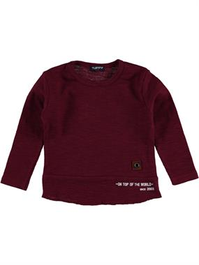 Tuffy Boys Burgundy Sweatshirt With 2-5 Years Civil