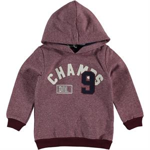 Cvl 2-5 Years Boy Hooded Sweatshirt Burgundy