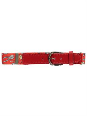 Civil Boys Age 1-8 Orange Adjustable Rubber Belt