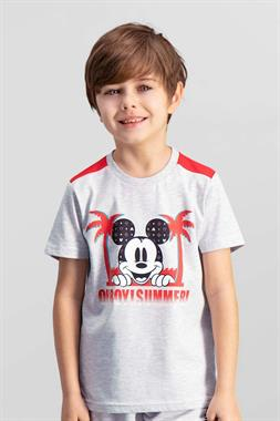 Mickey Mouse Mickey